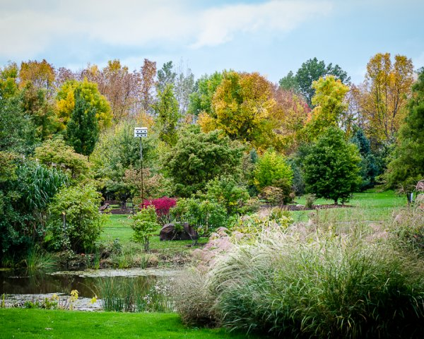 Autumn at the Arboretum